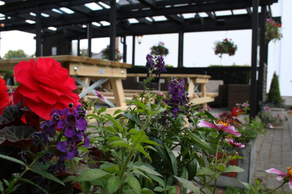 Pub garden space